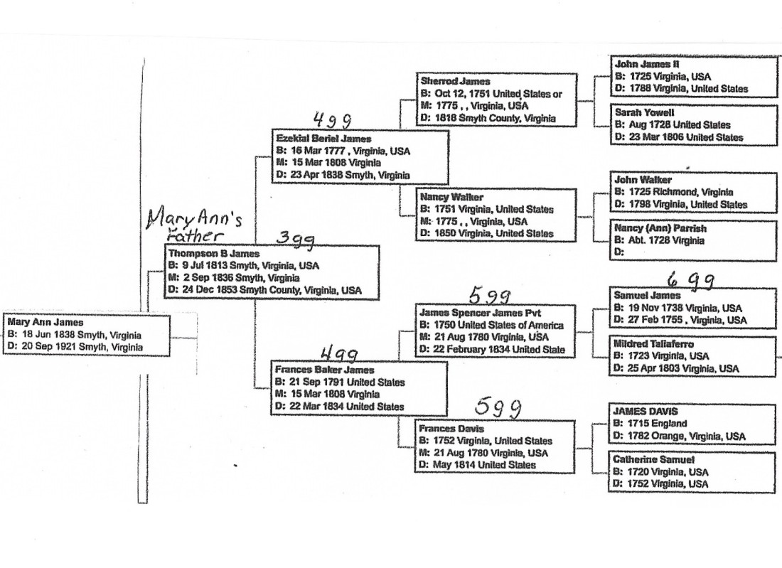 Mary Ann's pedigree 001